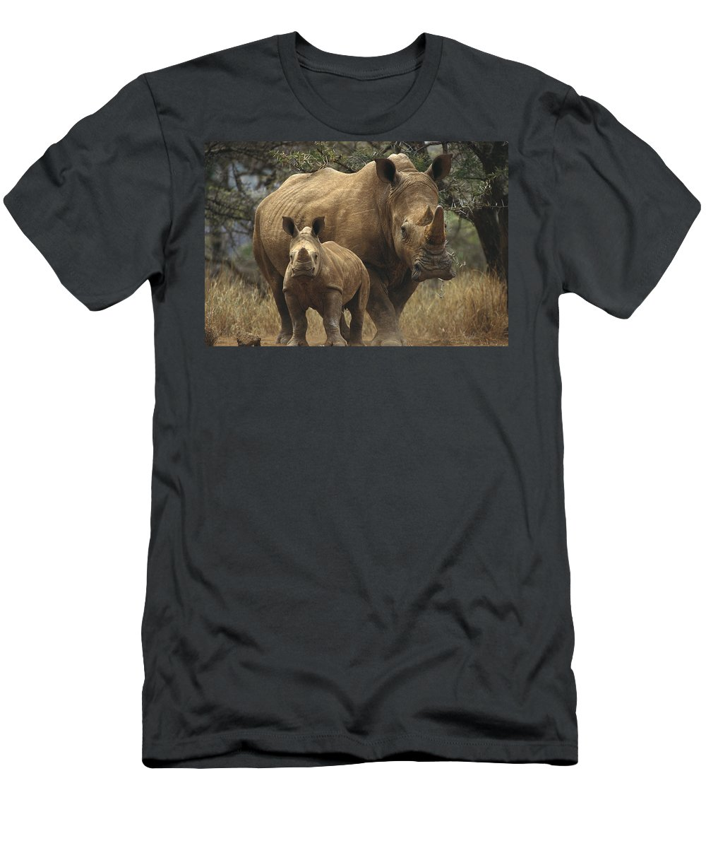 Feb0514 Men's T-Shirt (Athletic Fit) featuring the photograph White Rhinoceros And Baby Lewa Kenya by Gerry Ellis