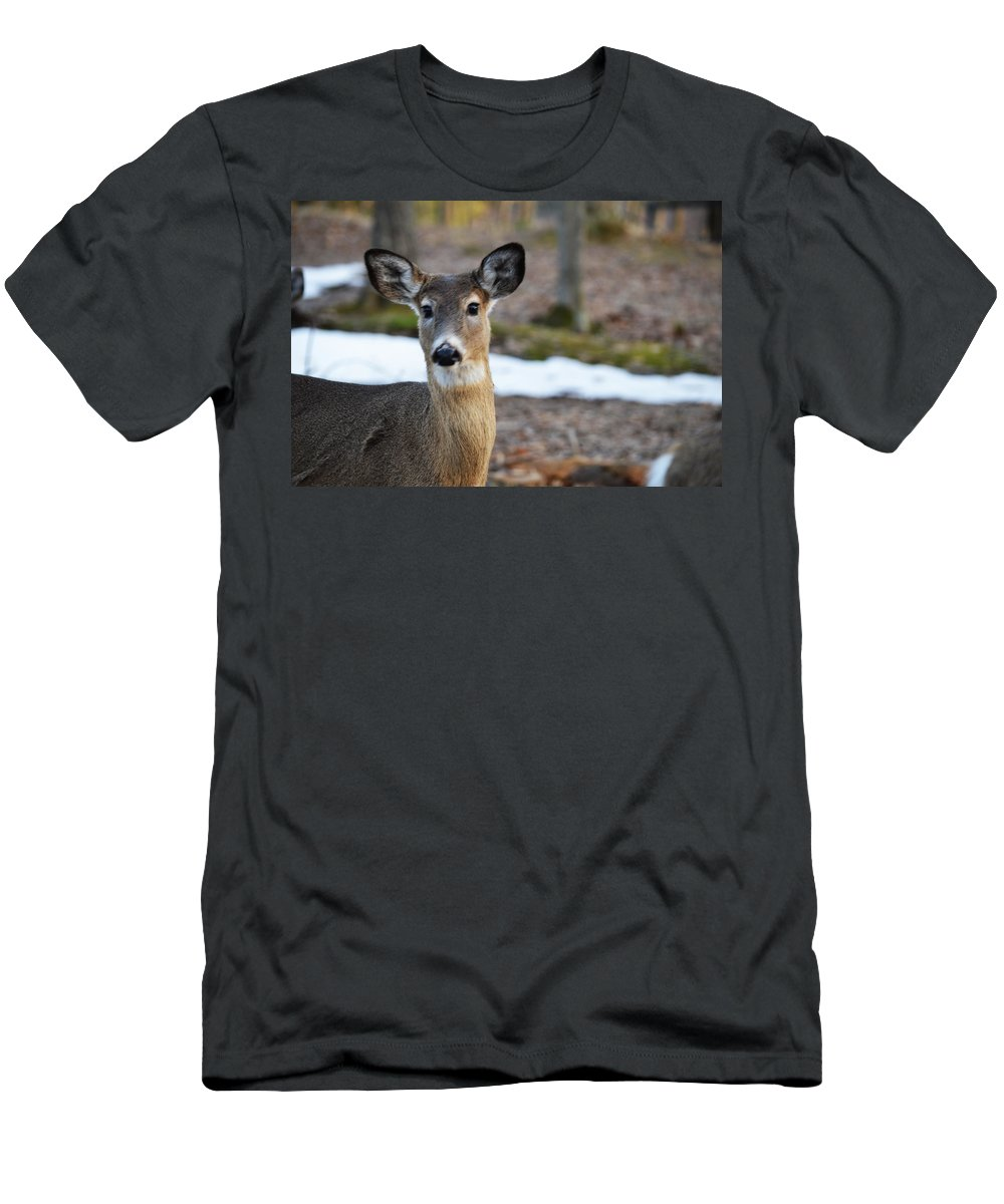 Whitetail Men's T-Shirt (Athletic Fit) featuring the photograph Who Is There by Linda Kerkau