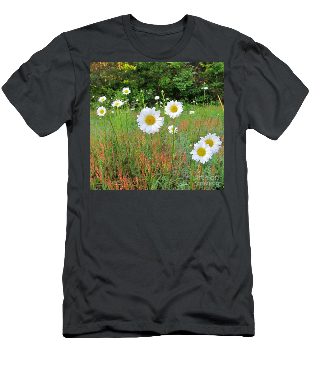 White Flowers White Daisies Wild Daisy Photographs White And Yellow Wildflower Prints Native Flora Wild Flora Forest Flora Images Wild Meadow Flowers Beautiful Blooms Protect Endangered Ecosystems Wild Grasslands North American Wildflowers Prints Rare Nature Pictures Natural Beauty Flowerscapes Floral Landscapes Natural Landscapes Natural Concentric Design Maryland Parks Biodiversity Organic Farms Only Fine Art America Daisy Field Of Daisies Living Color Men's T-Shirt (Athletic Fit) featuring the photograph Wild Daisies by Joshua Bales