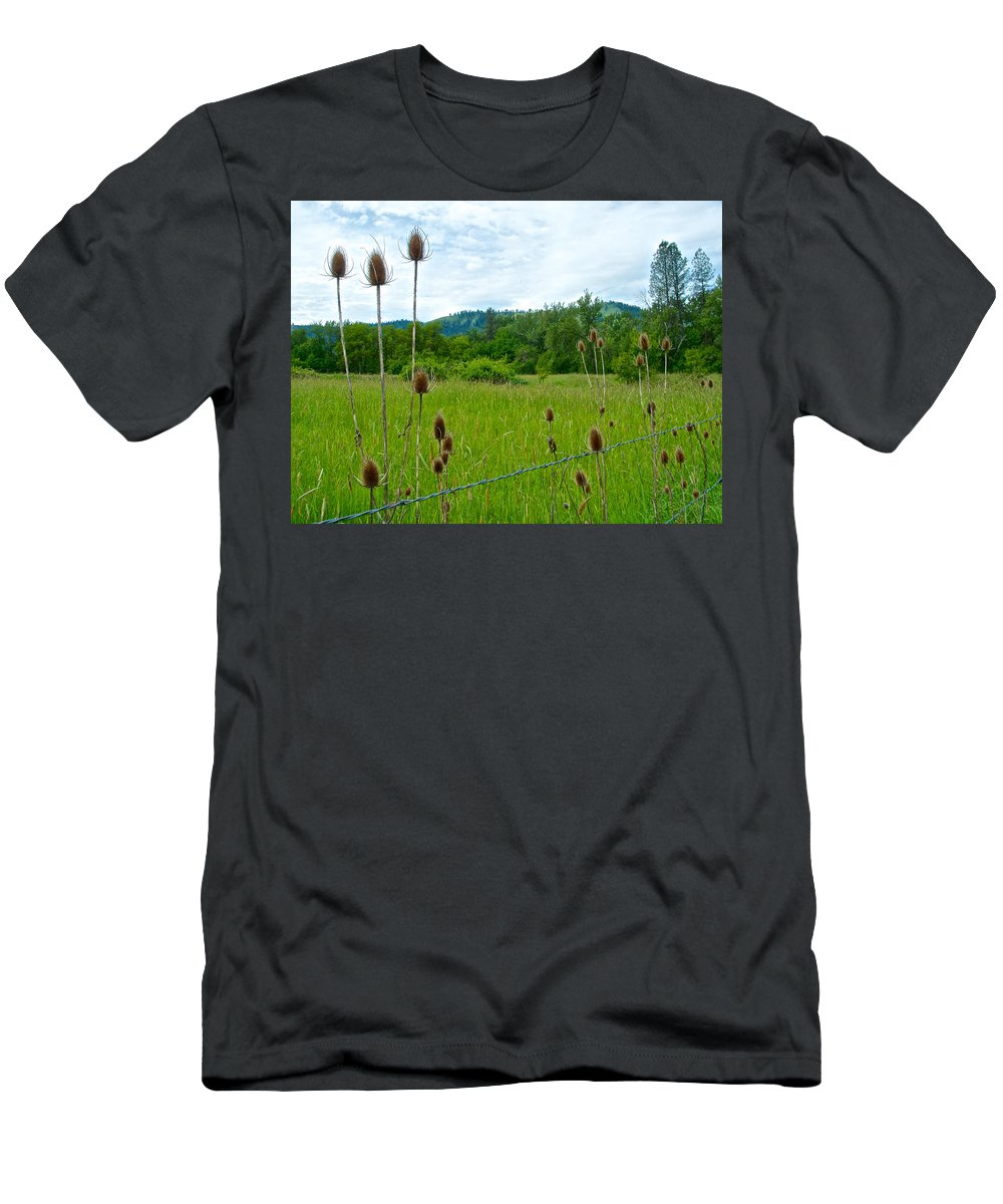 Wild Teasel Men's T-Shirt (Athletic Fit) featuring the photograph Wild Teasel In Nez Perce National Historical Park-id- by Ruth Hager