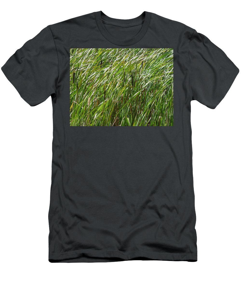 Nature Men's T-Shirt (Athletic Fit) featuring the photograph Windswept Cattails by Noa Mohlabane
