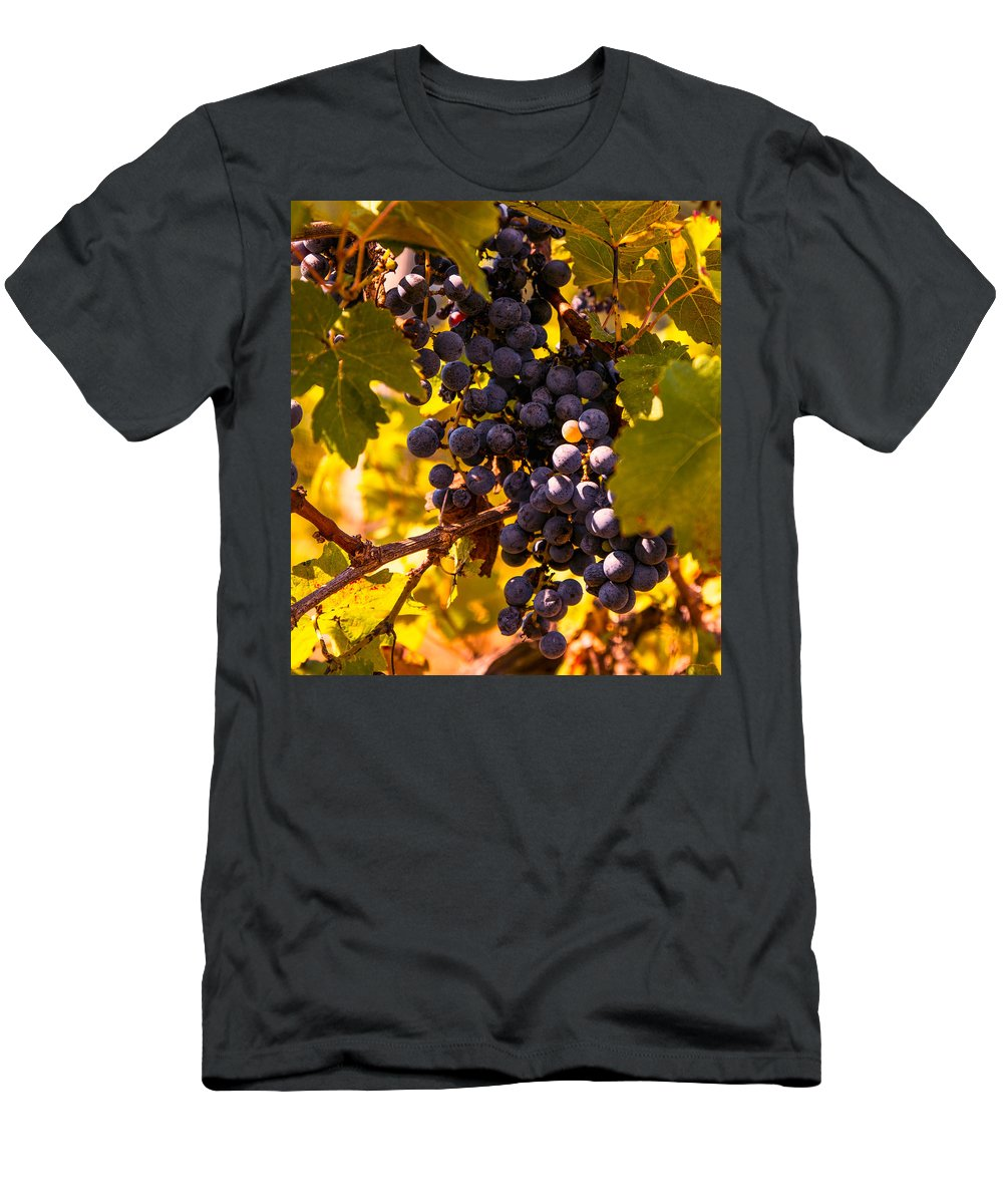 Grape Men's T-Shirt (Athletic Fit) featuring the photograph Wine Grapes by Zina Stromberg