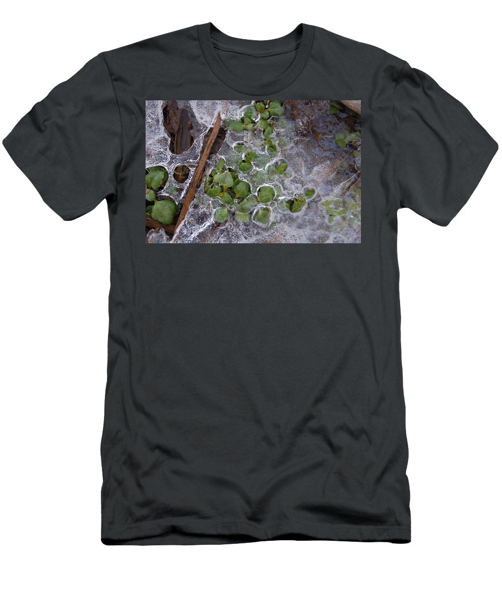 Winter Men's T-Shirt (Athletic Fit) featuring the photograph Winter Thaw by Jennifer Forsyth