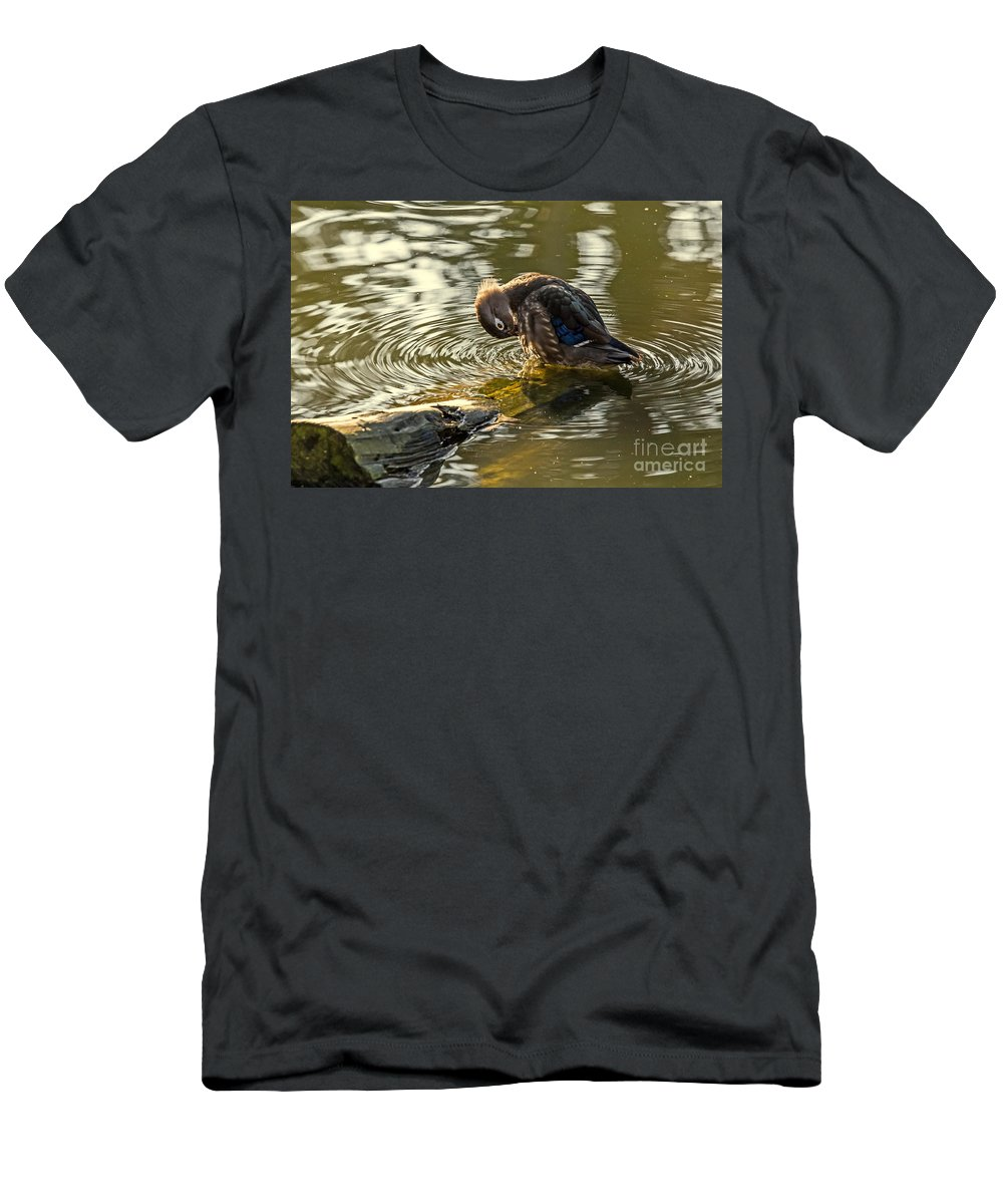 Aix Sponsa Men's T-Shirt (Athletic Fit) featuring the photograph Wood Duck Hen Preening by Kate Brown