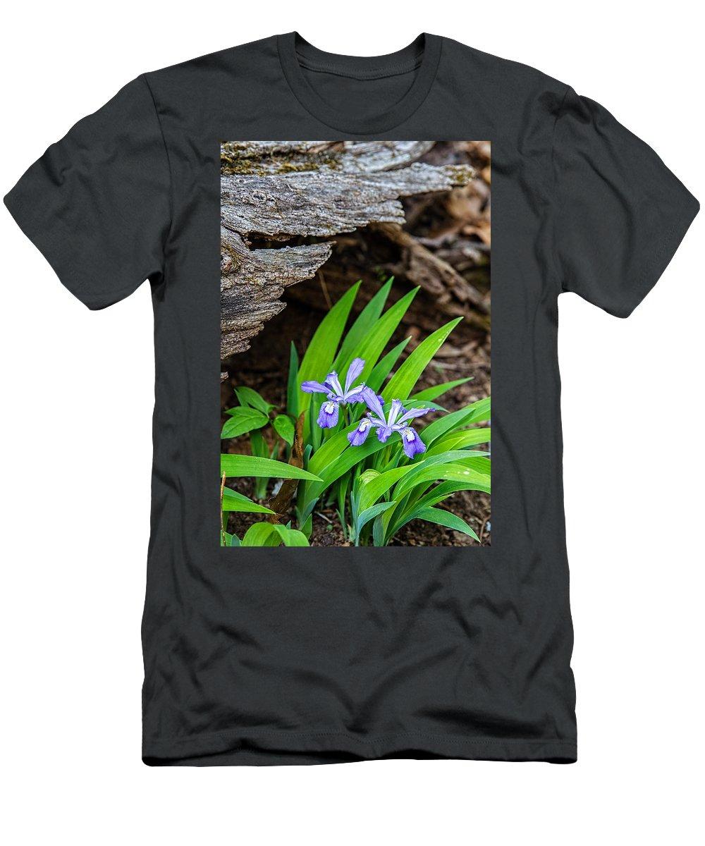 Iris Men's T-Shirt (Athletic Fit) featuring the photograph Woodland Dwarf Iris Wildflowers by John Haldane