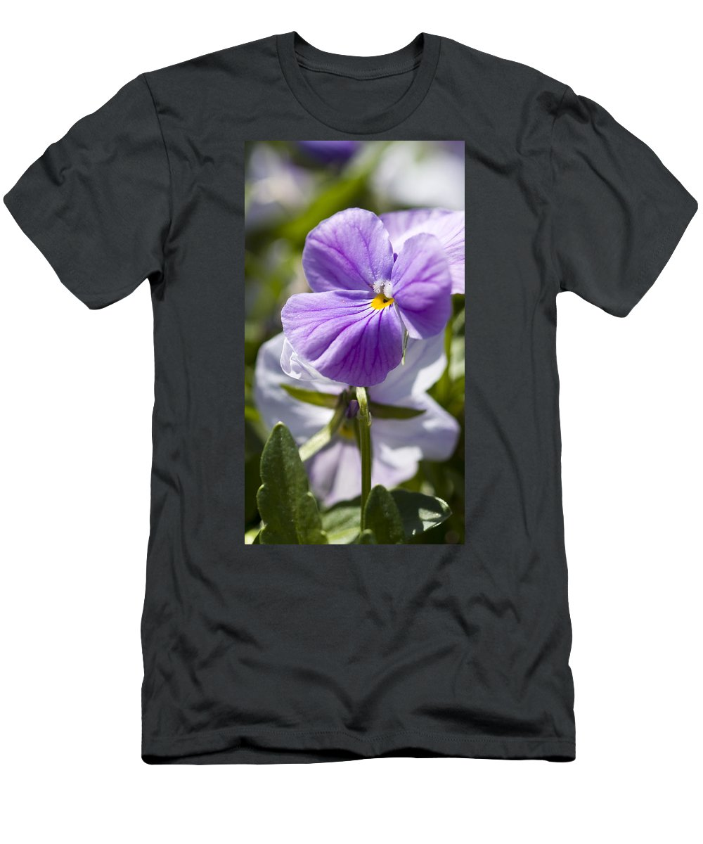 Rose Photographs Men's T-Shirt (Athletic Fit) featuring the photograph Woodward Pansy by Vernis Maxwell