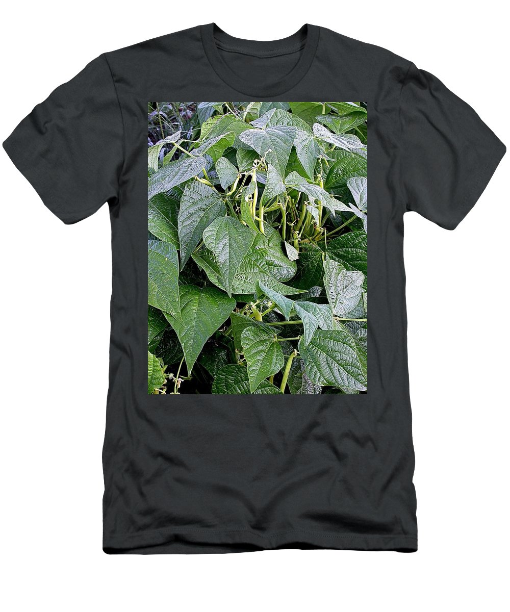 Bean Field Men's T-Shirt (Athletic Fit) featuring the photograph Yellow Beans by Cynthia Wallentine