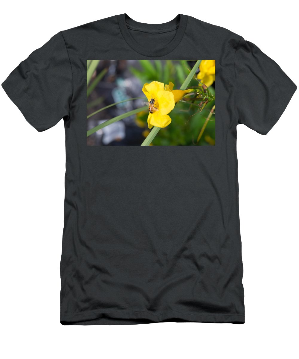Texas Men's T-Shirt (Athletic Fit) featuring the photograph Yellow Bell Flower With Honeybee by JG Thompson
