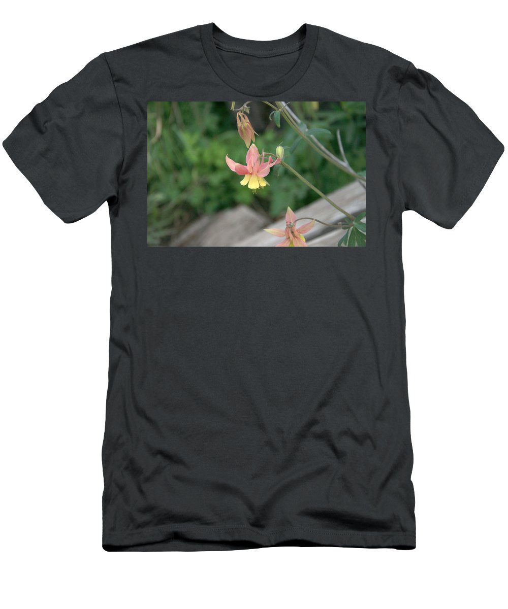 Yellow T-Shirt featuring the photograph Yellow Columbine 2 by Frank Madia