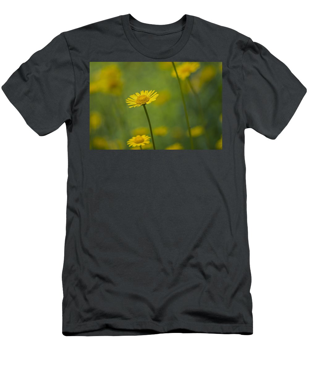 Flower Men's T-Shirt (Athletic Fit) featuring the photograph Yellow Flower by Paulo Goncalves