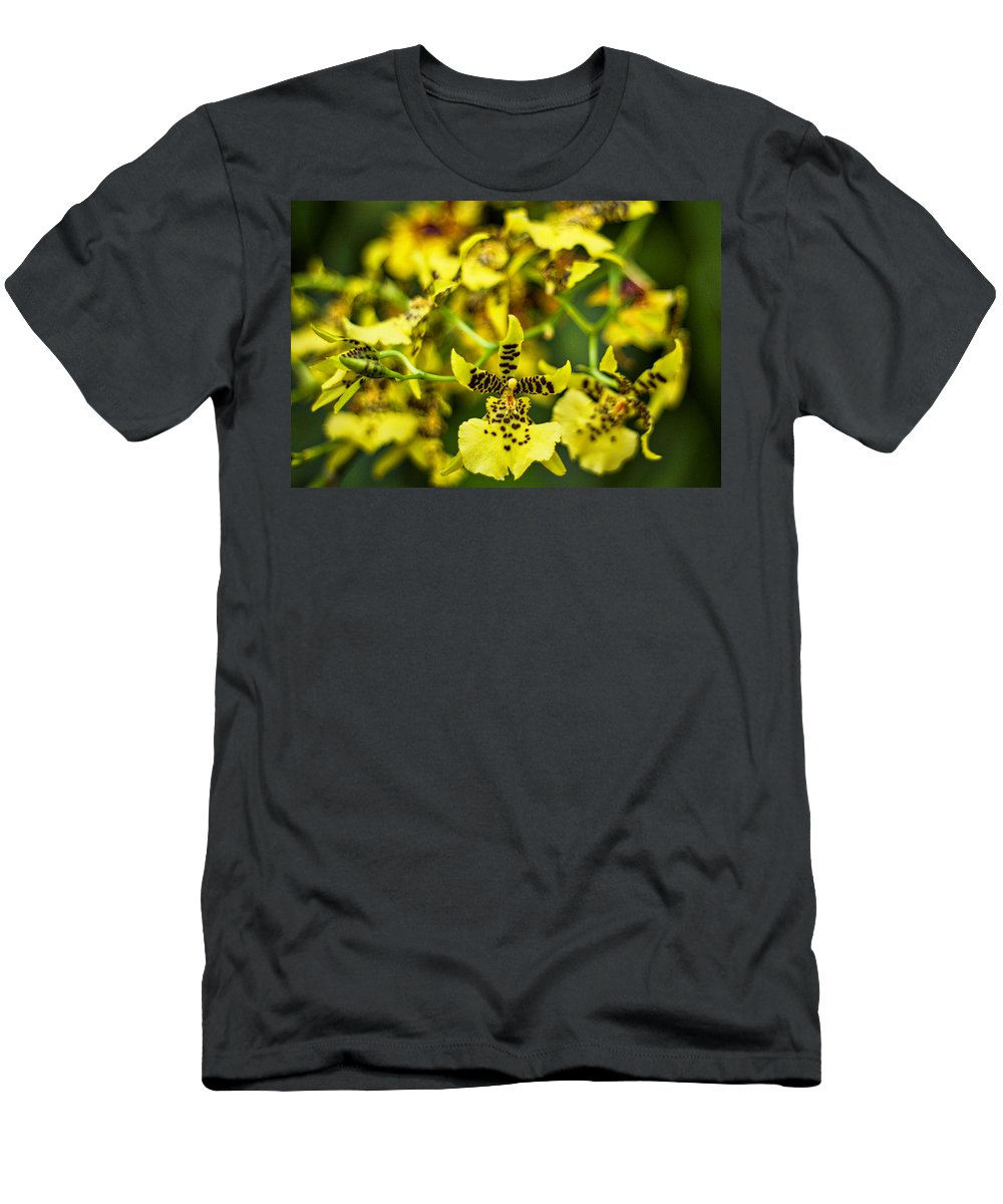 Orchid Men's T-Shirt (Athletic Fit) featuring the photograph Yellow Orchids by Stuart Litoff