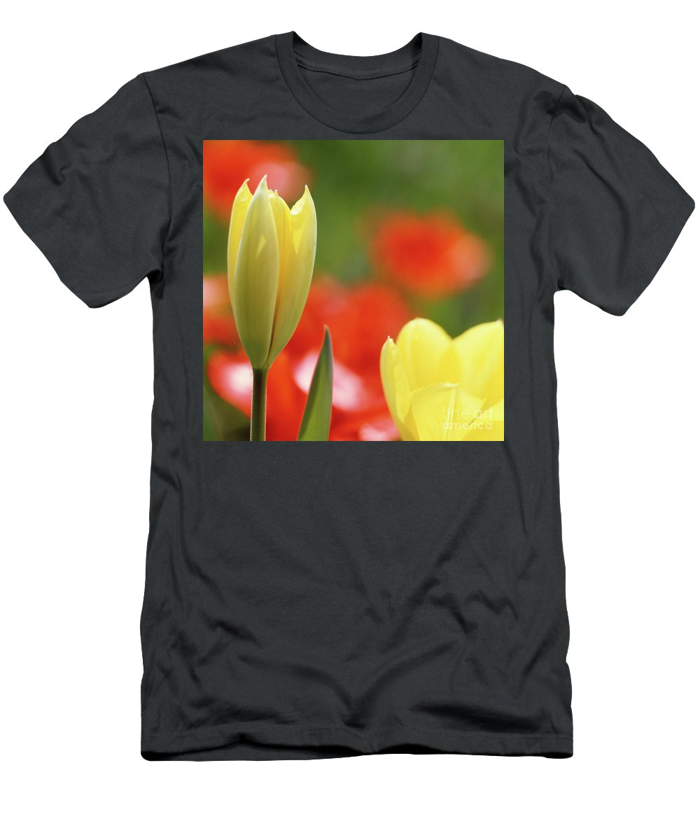 Tulip Men's T-Shirt (Athletic Fit) featuring the photograph Yellow Tulips by Heiko Koehrer-Wagner