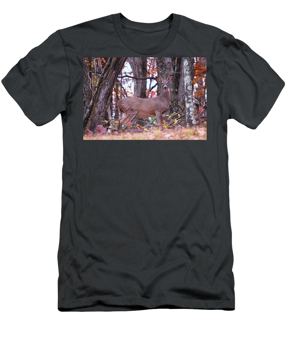 Buck T-Shirt featuring the photograph You looking at me? by Eric Liller