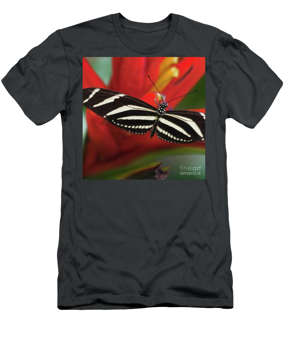 Mariposa Men's T-Shirt (Athletic Fit) featuring the photograph Zebra Longwing Butterfly by Heiko Koehrer-Wagner