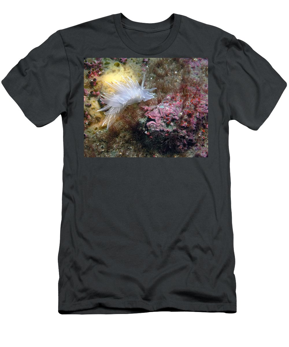 Alabaster Men's T-Shirt (Athletic Fit) featuring the photograph Alabaster Nudibranch by Derek Holzapfel