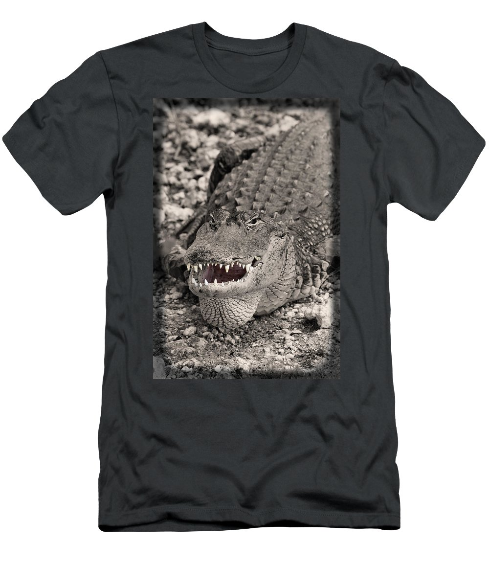 Close-up T-Shirt featuring the photograph American Alligator by Rudy Umans