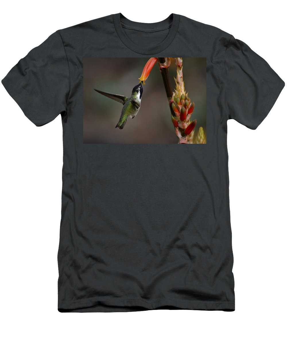 Black-chinned Hummingbird Men's T-Shirt (Athletic Fit) featuring the photograph Black-chinned Hummingbird by Saija Lehtonen