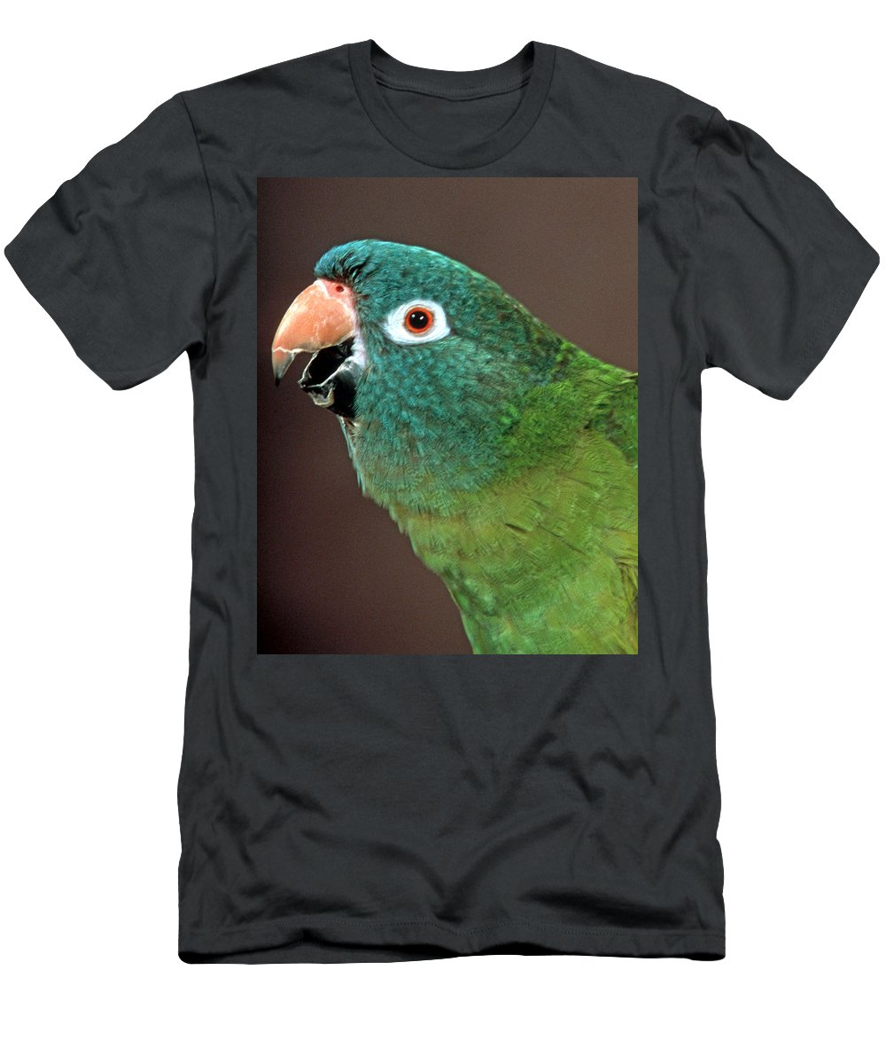 Blue Crowned Conure Men's T-Shirt (Athletic Fit) featuring the photograph Blue Crowned Conure by Larry Allan