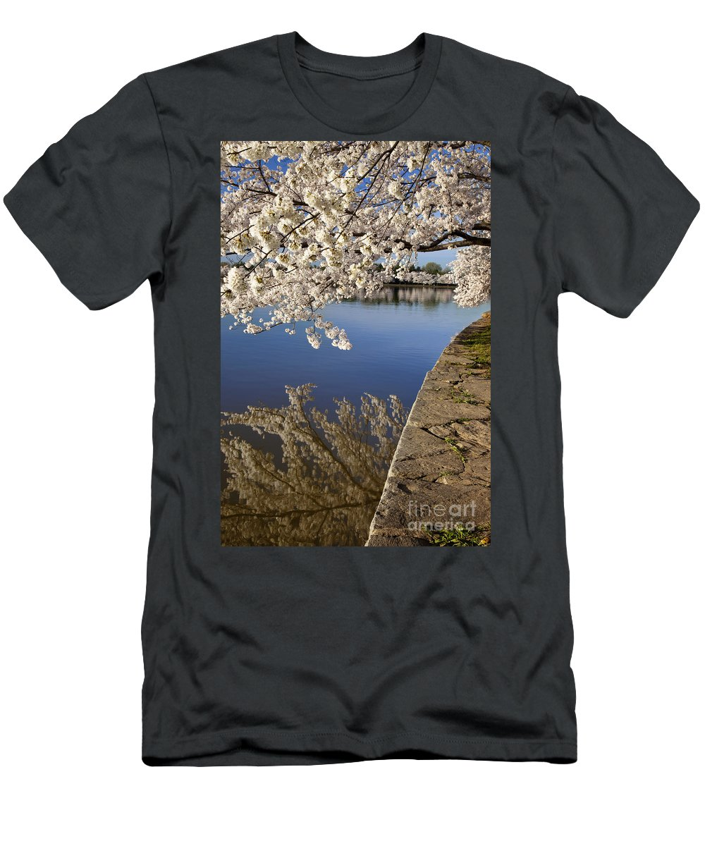 Blossom Men's T-Shirt (Athletic Fit) featuring the photograph Cherry Blossoms by Brian Jannsen