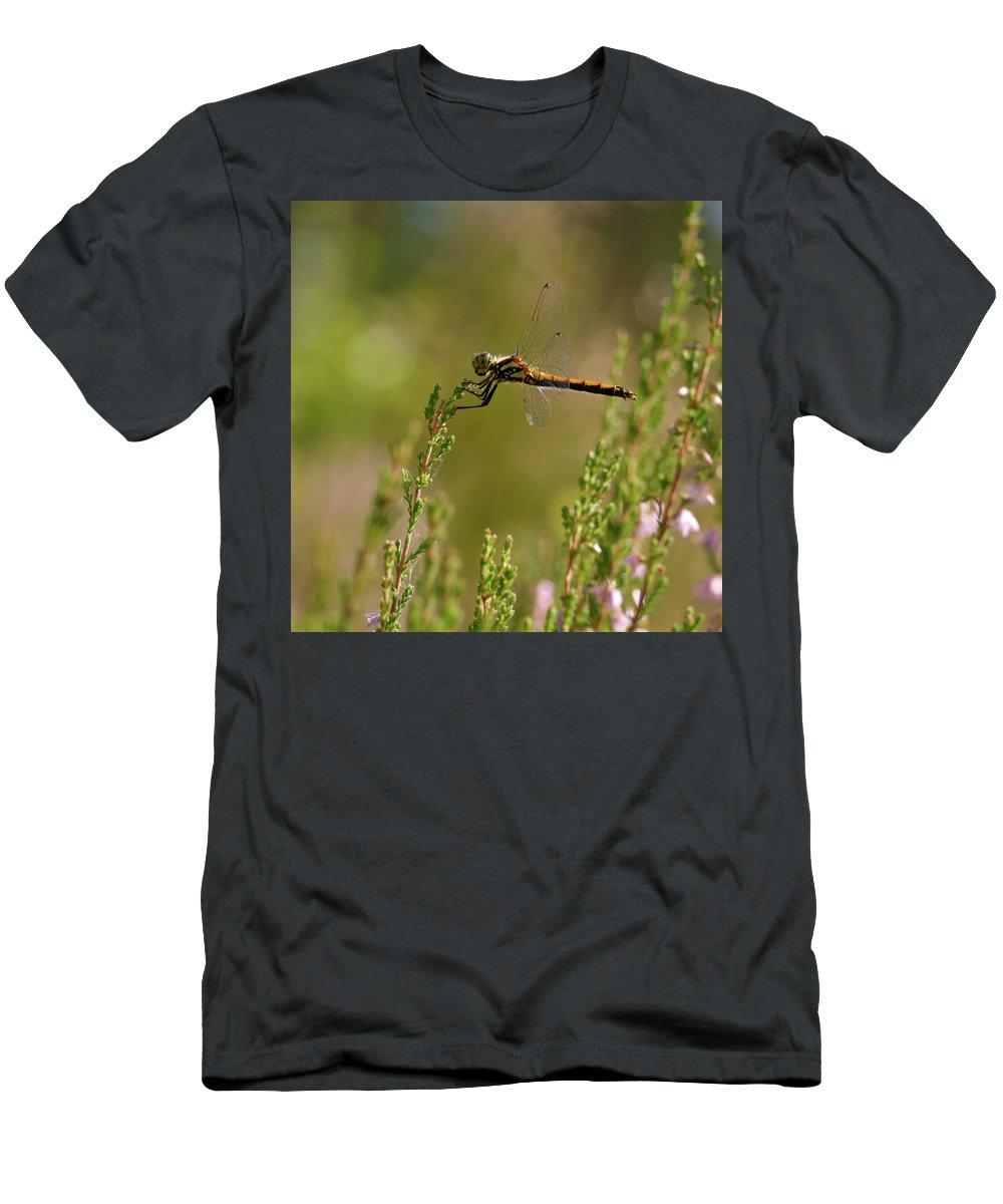 Jouko Lehto Men's T-Shirt (Athletic Fit) featuring the photograph Darter 2 by Jouko Lehto