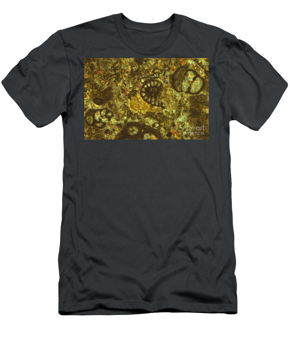Science Men's T-Shirt (Athletic Fit) featuring the photograph Foraminiferous Limestone Lm by M. I. Walker