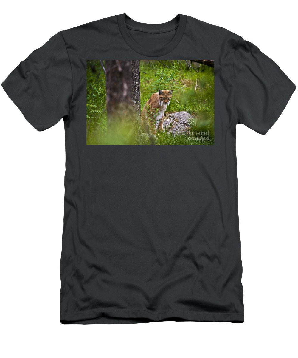 Nature Men's T-Shirt (Athletic Fit) featuring the photograph Lynx by Heiko Koehrer-Wagner
