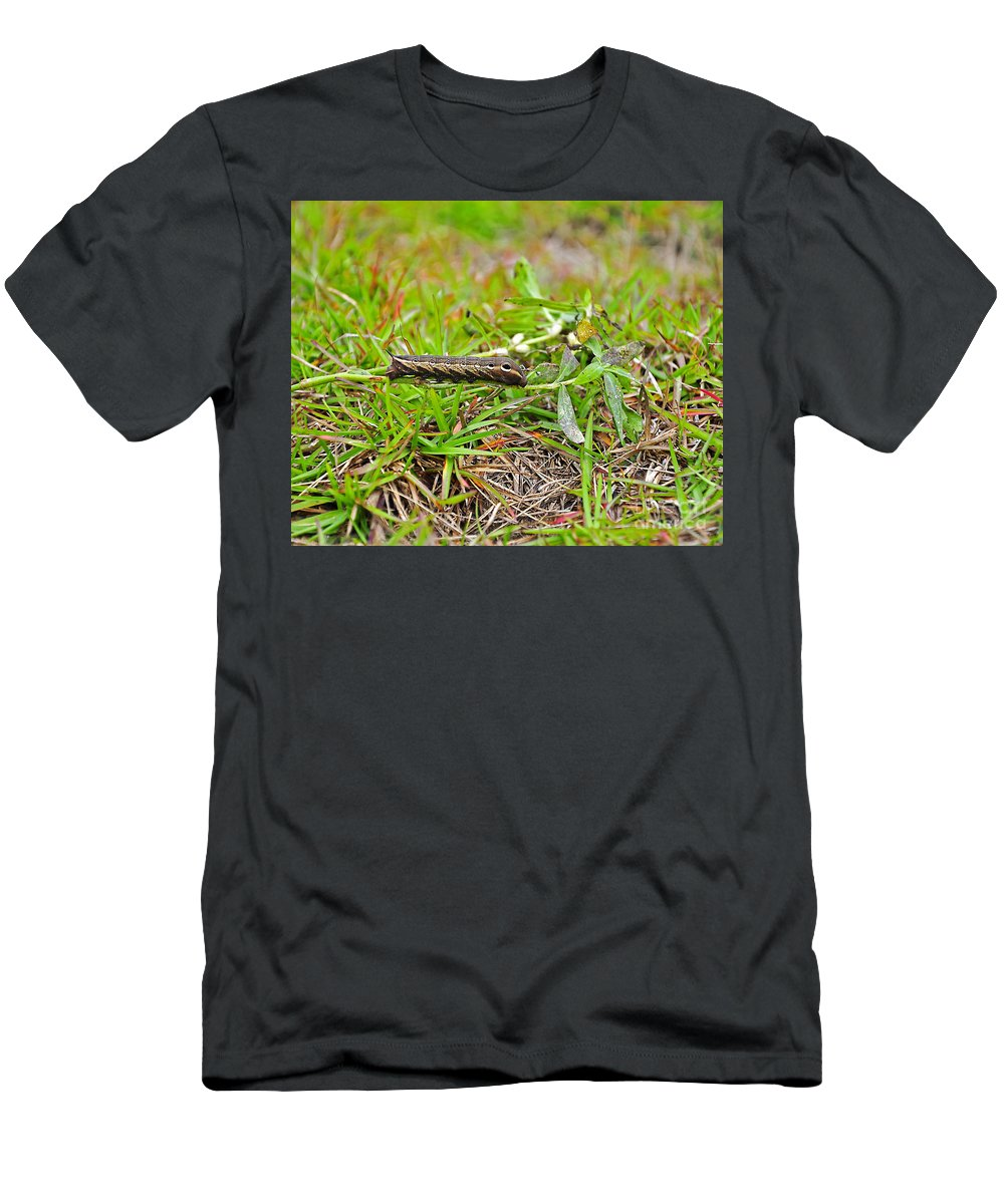 Caterpillar Men's T-Shirt (Athletic Fit) featuring the photograph Tersa Sphinx Caterpillar by Al Powell Photography USA