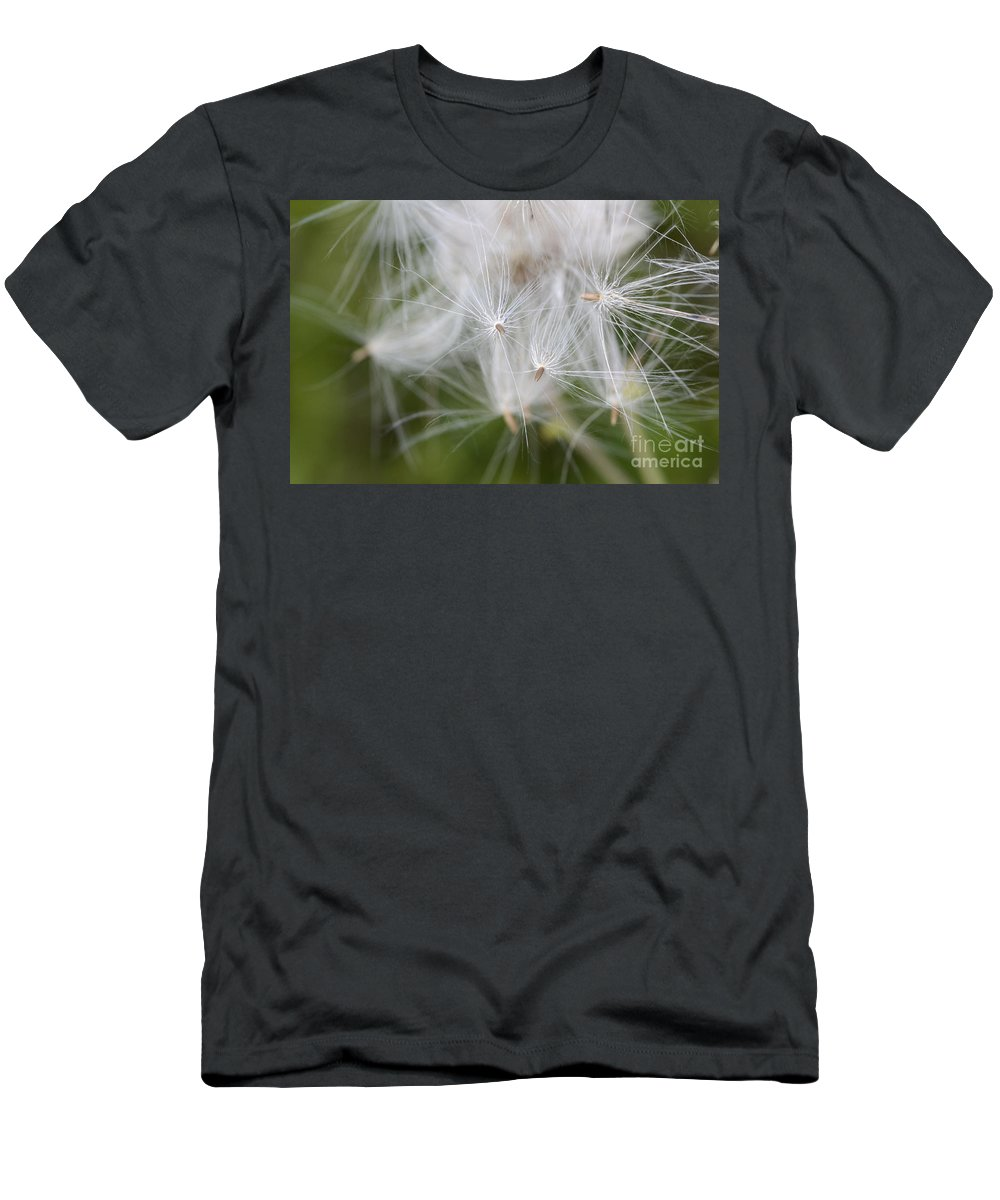 Thistle Seeds Men's T-Shirt (Athletic Fit) featuring the photograph Thistle Seeds by Bob Christopher