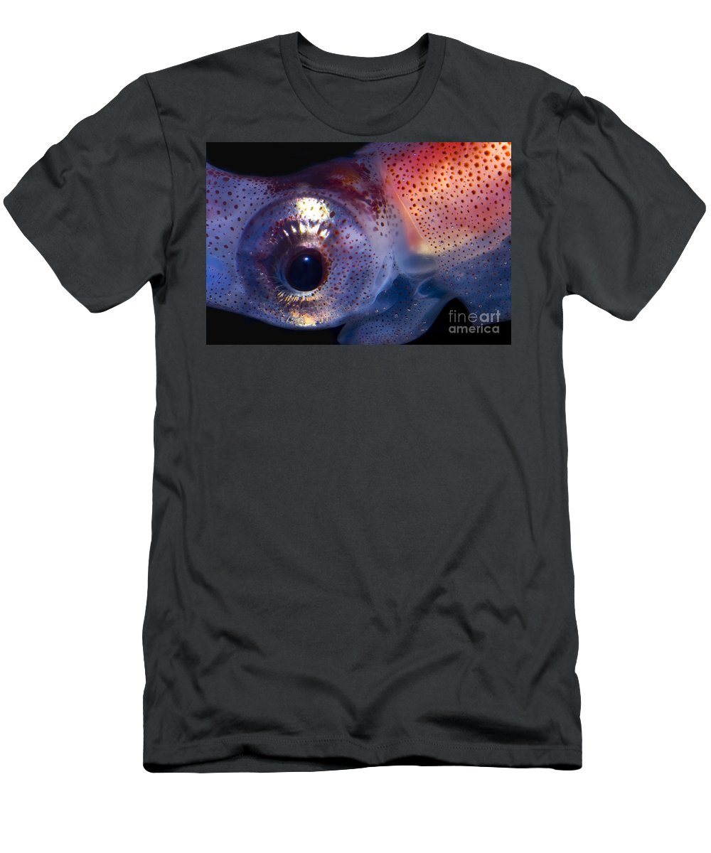 Firefly Squid Men's T-Shirt (Athletic Fit) featuring the photograph Firefly Squid by Dante Fenolio