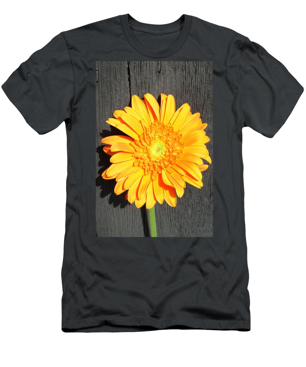 Gerbera Photographs Men's T-Shirt (Athletic Fit) featuring the photograph 1599-001 by Kimberlie Gerner