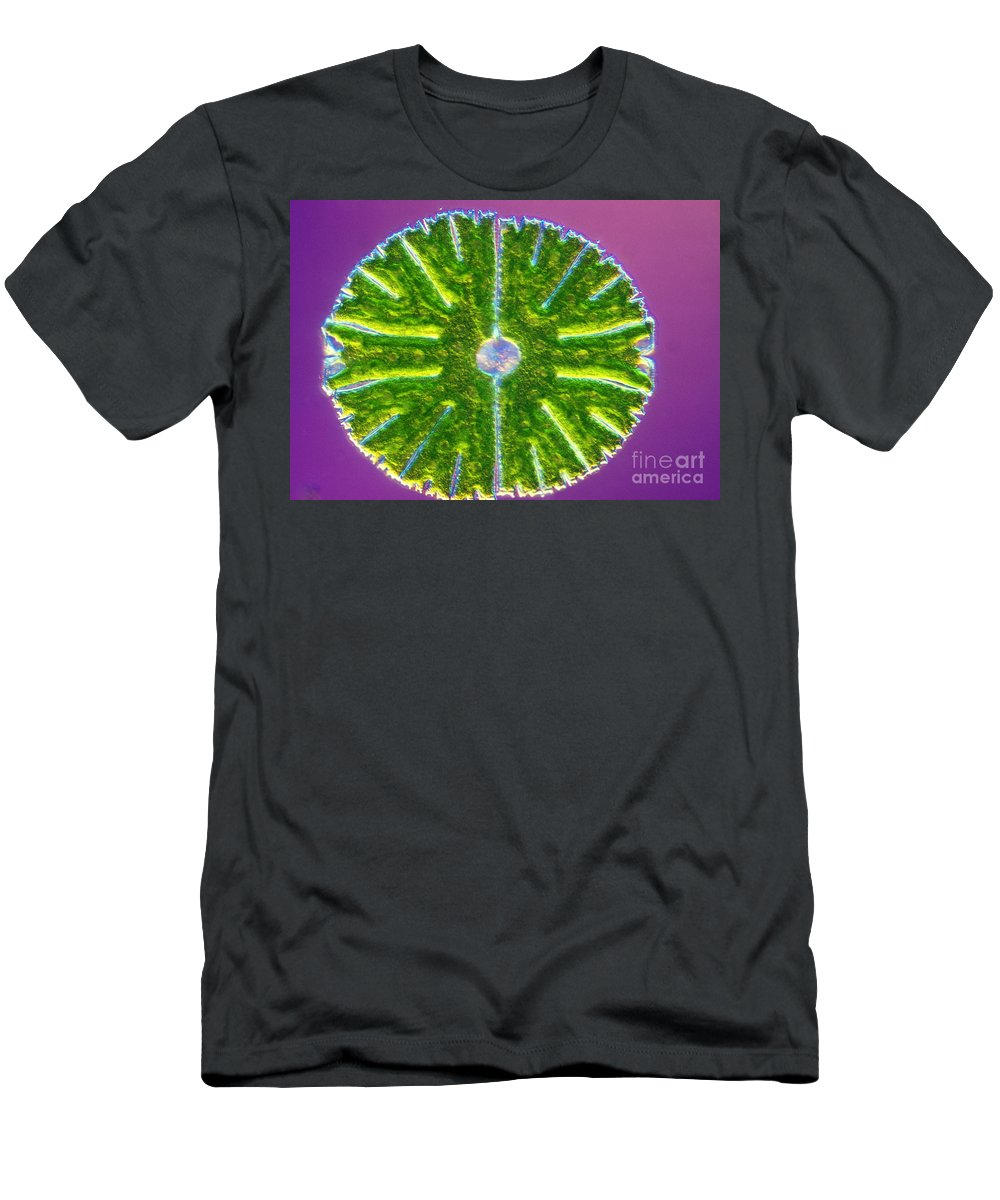 Cell Men's T-Shirt (Athletic Fit) featuring the photograph Micrasterias Denticulata by M. I. Walker
