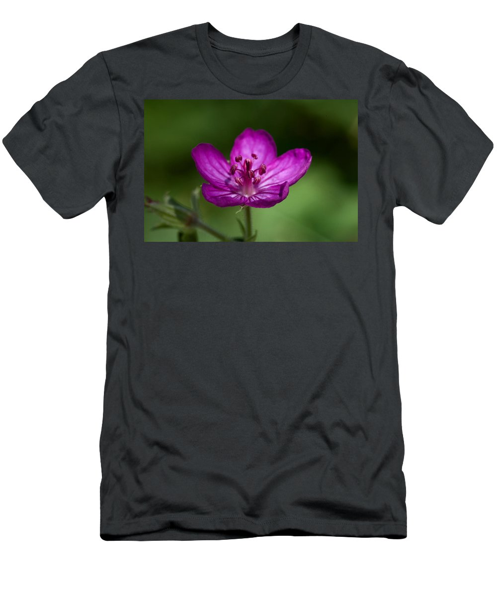 Wildflower Men's T-Shirt (Athletic Fit) featuring the photograph Wild Geranium by Rich Franco