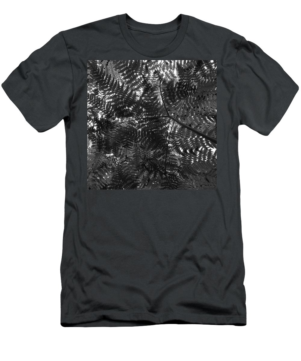 Lehtokukka Men's T-Shirt (Athletic Fit) featuring the photograph Ferns by Jouko Lehto