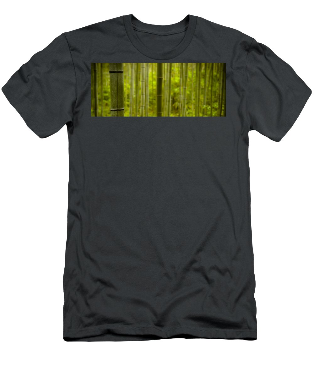 Bamboo Men's T-Shirt (Athletic Fit) featuring the photograph Mystical Bamboo by Sebastian Musial
