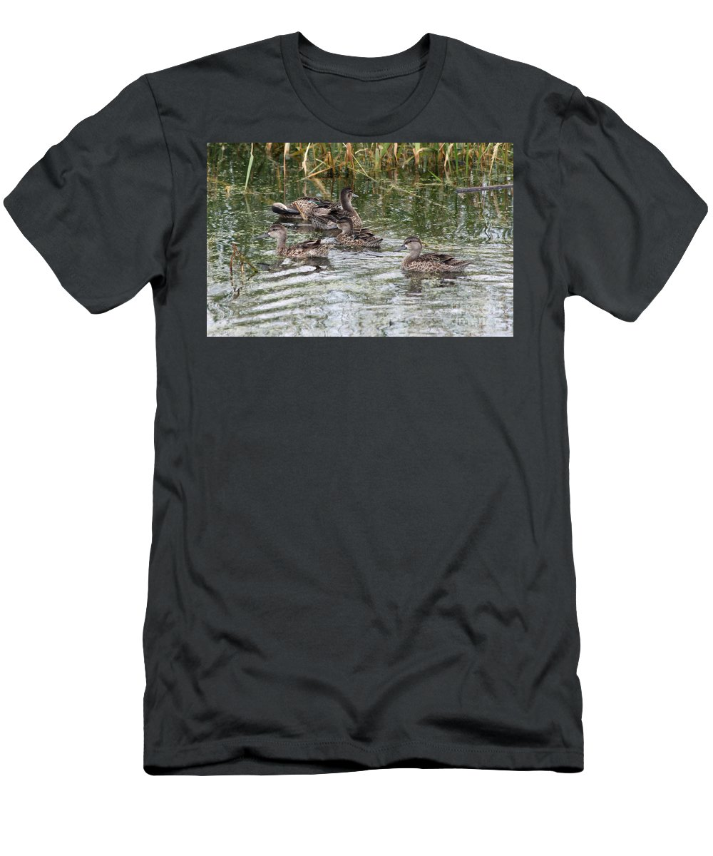 Teal Men's T-Shirt (Athletic Fit) featuring the photograph Teal Ducks by Lori Tordsen