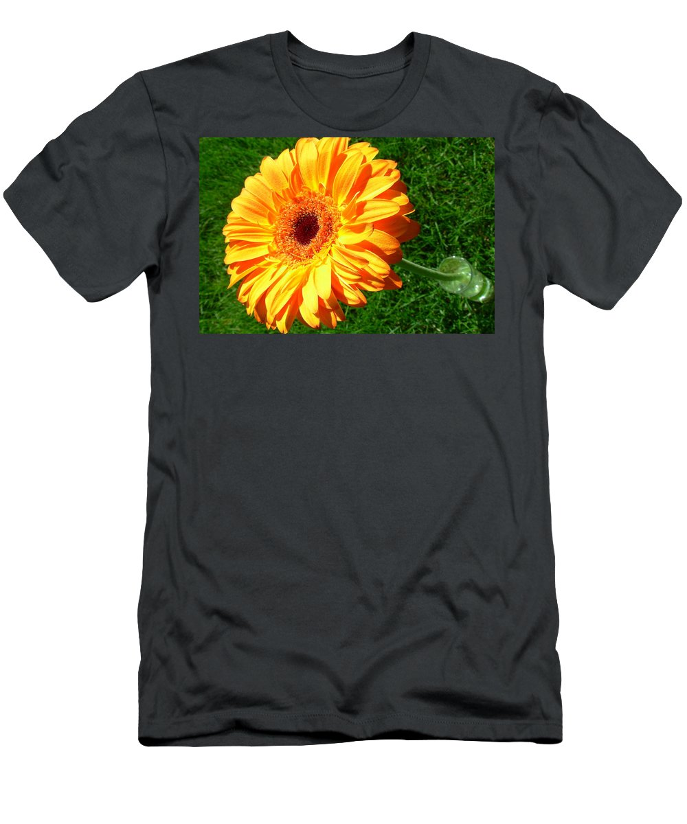 Gerbera Photographs Men's T-Shirt (Athletic Fit) featuring the photograph 3411-001 by Kimberlie Gerner