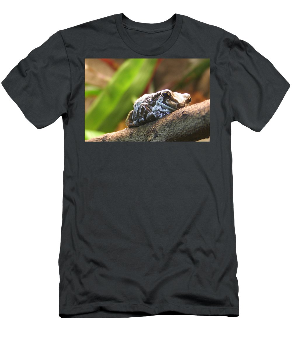 Amazon Milk Frog Men's T-Shirt (Athletic Fit) featuring the photograph Amazon Milk Frog by Laurel Talabere