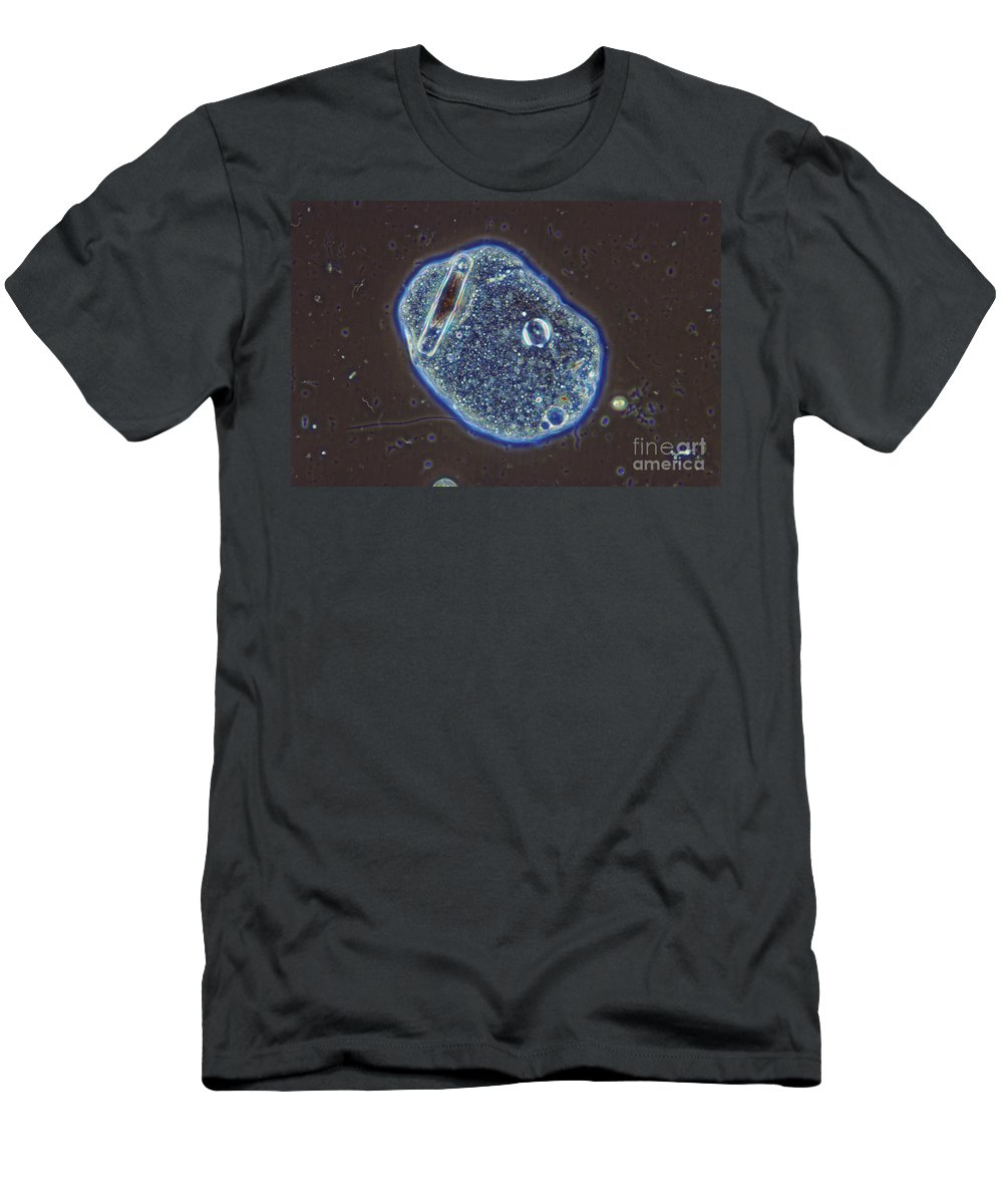 Science Men's T-Shirt (Athletic Fit) featuring the photograph Amoeba Sp. Lm by M. I. Walker