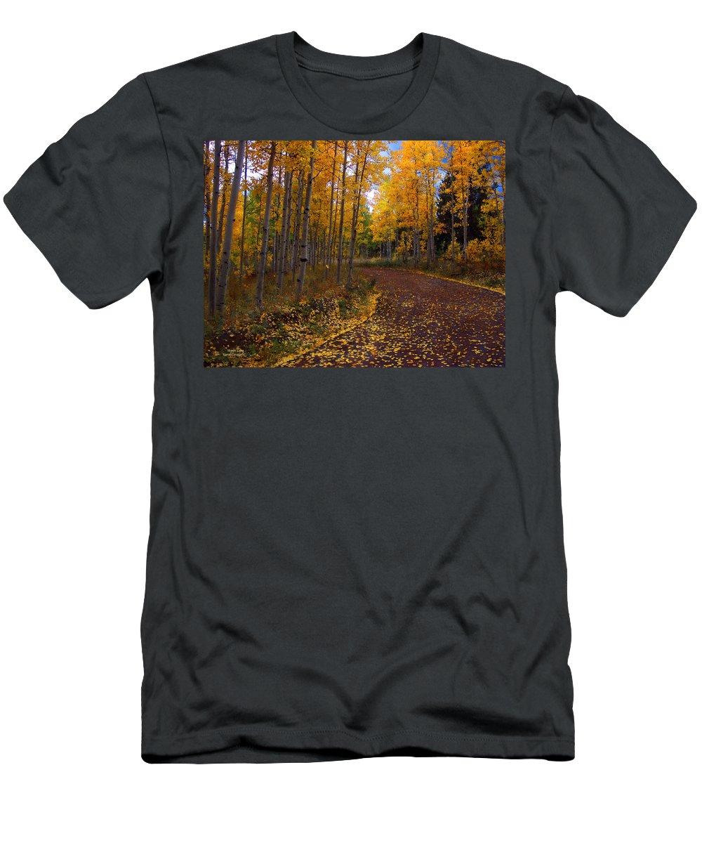 Aspen Trees Men's T-Shirt (Athletic Fit) featuring the mixed media Aspen Lane by Carol Cavalaris