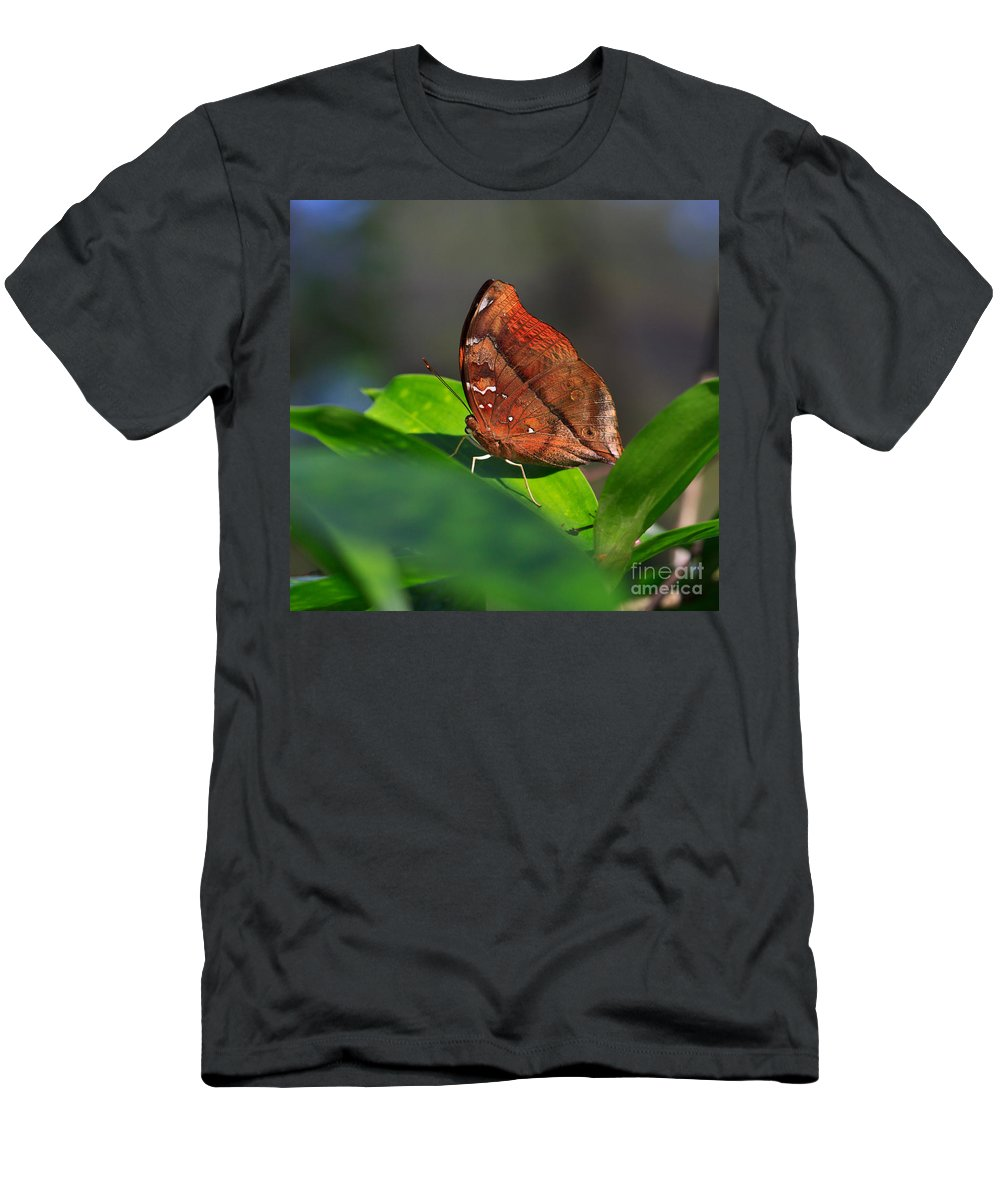 Pretty Butterfly Men's T-Shirt (Athletic Fit) featuring the photograph Autumn Leaf Butterfly by Louise Heusinkveld