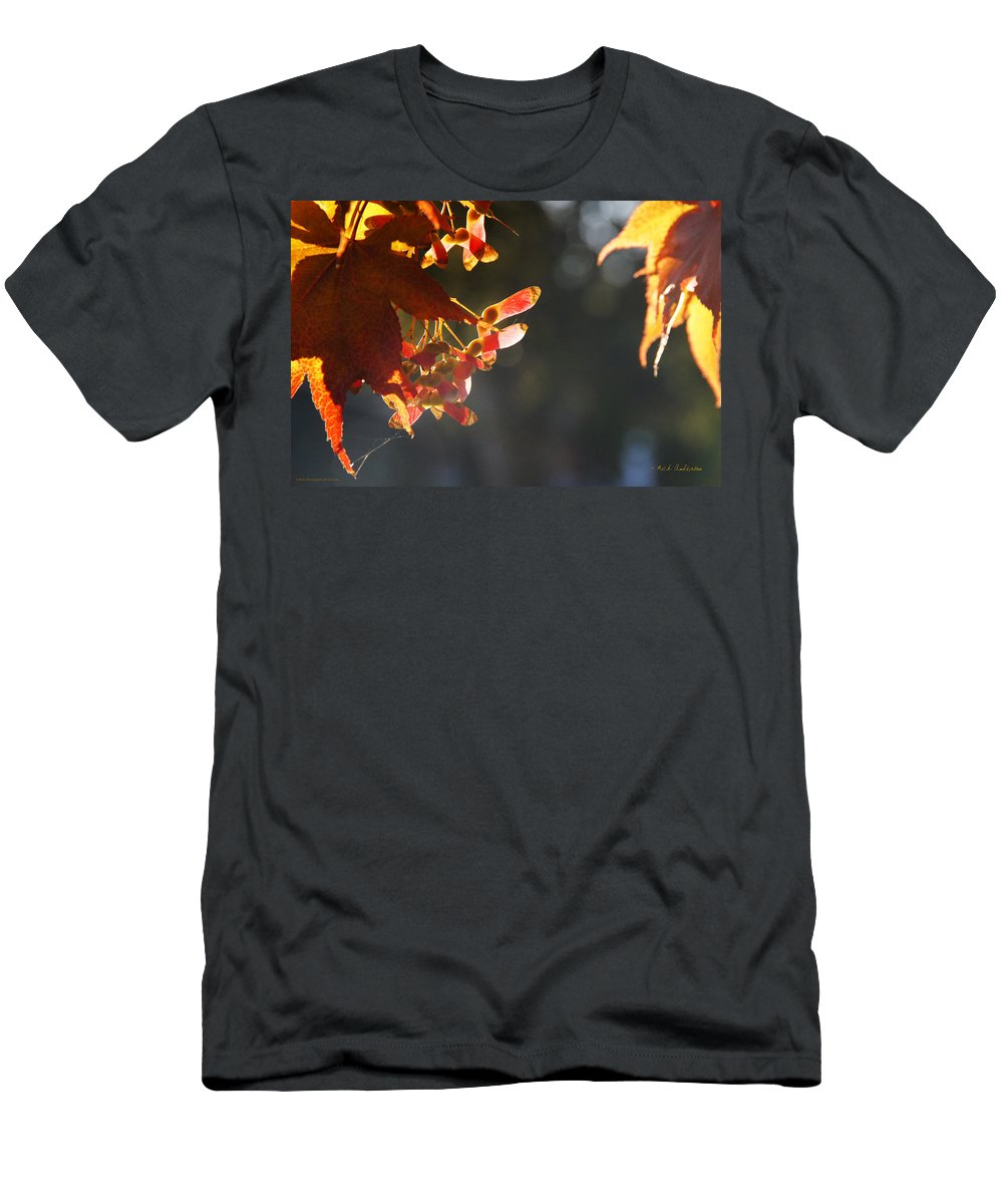 Autumn Men's T-Shirt (Athletic Fit) featuring the photograph Autumn Maple by Mick Anderson