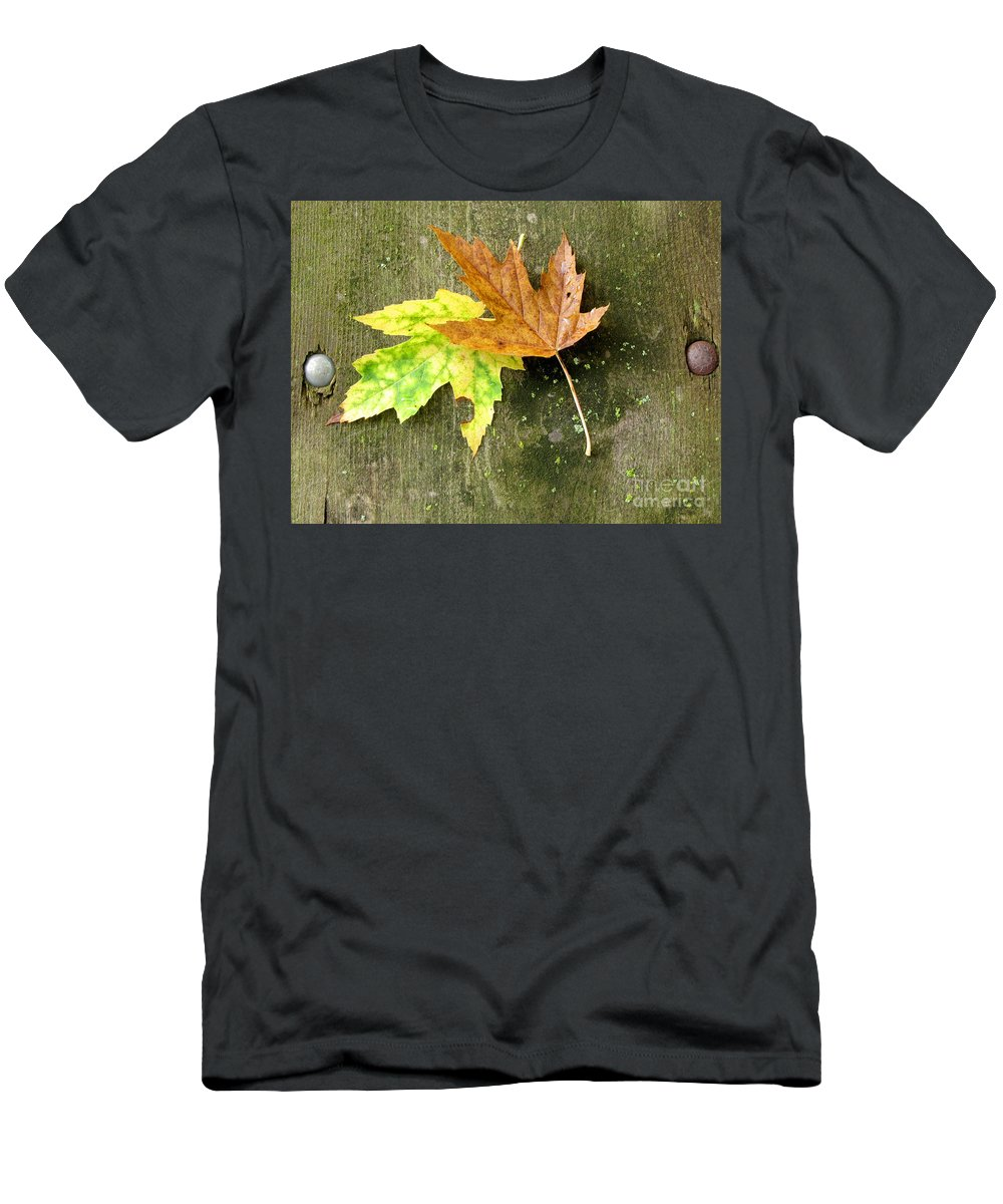 Autumn Leaves Men's T-Shirt (Athletic Fit) featuring the photograph Autumn Pair by Marilyn Smith