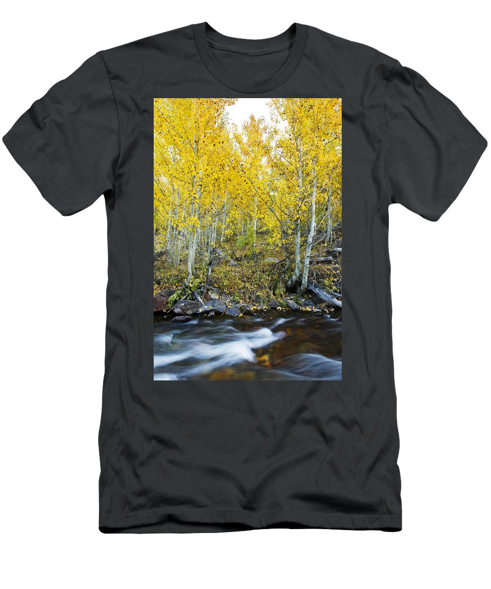 Aspen Men's T-Shirt (Athletic Fit) featuring the photograph Autumn Stream II by MakenaStockMedia - Printscapes