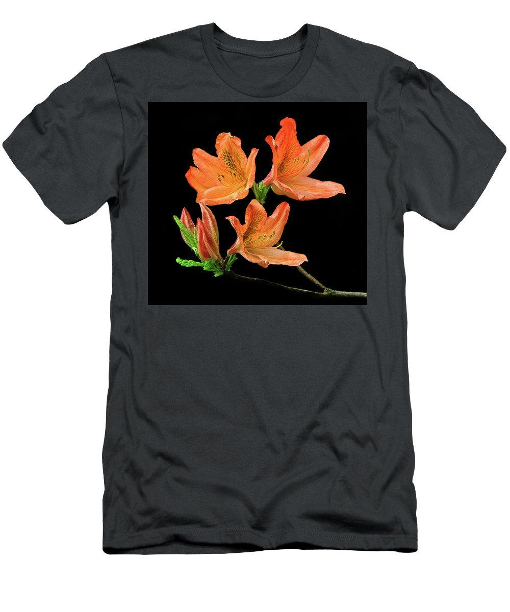 Azalea Men's T-Shirt (Athletic Fit) featuring the photograph Azalea by Dave Mills