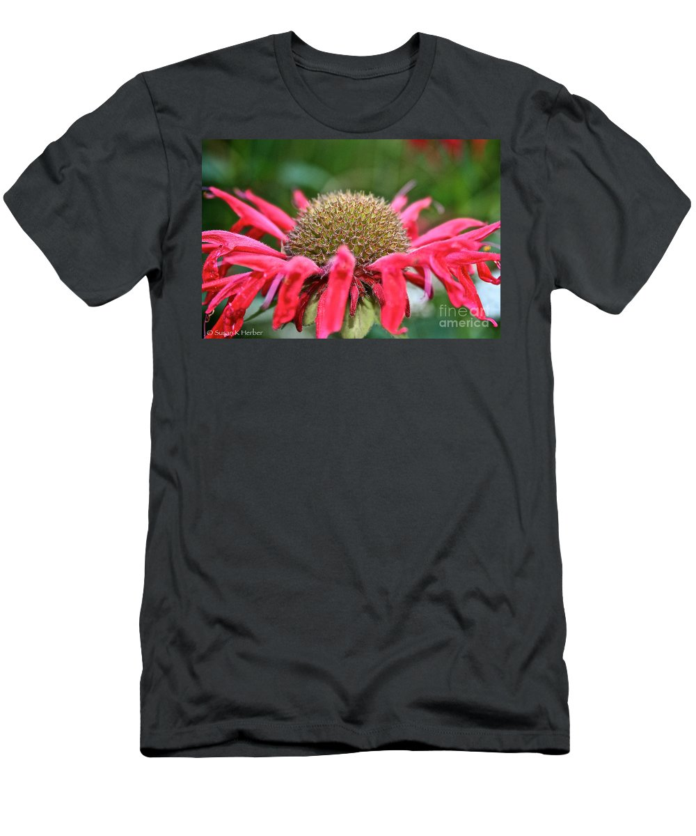 Outdoors Men's T-Shirt (Athletic Fit) featuring the photograph Bee Balm Button by Susan Herber