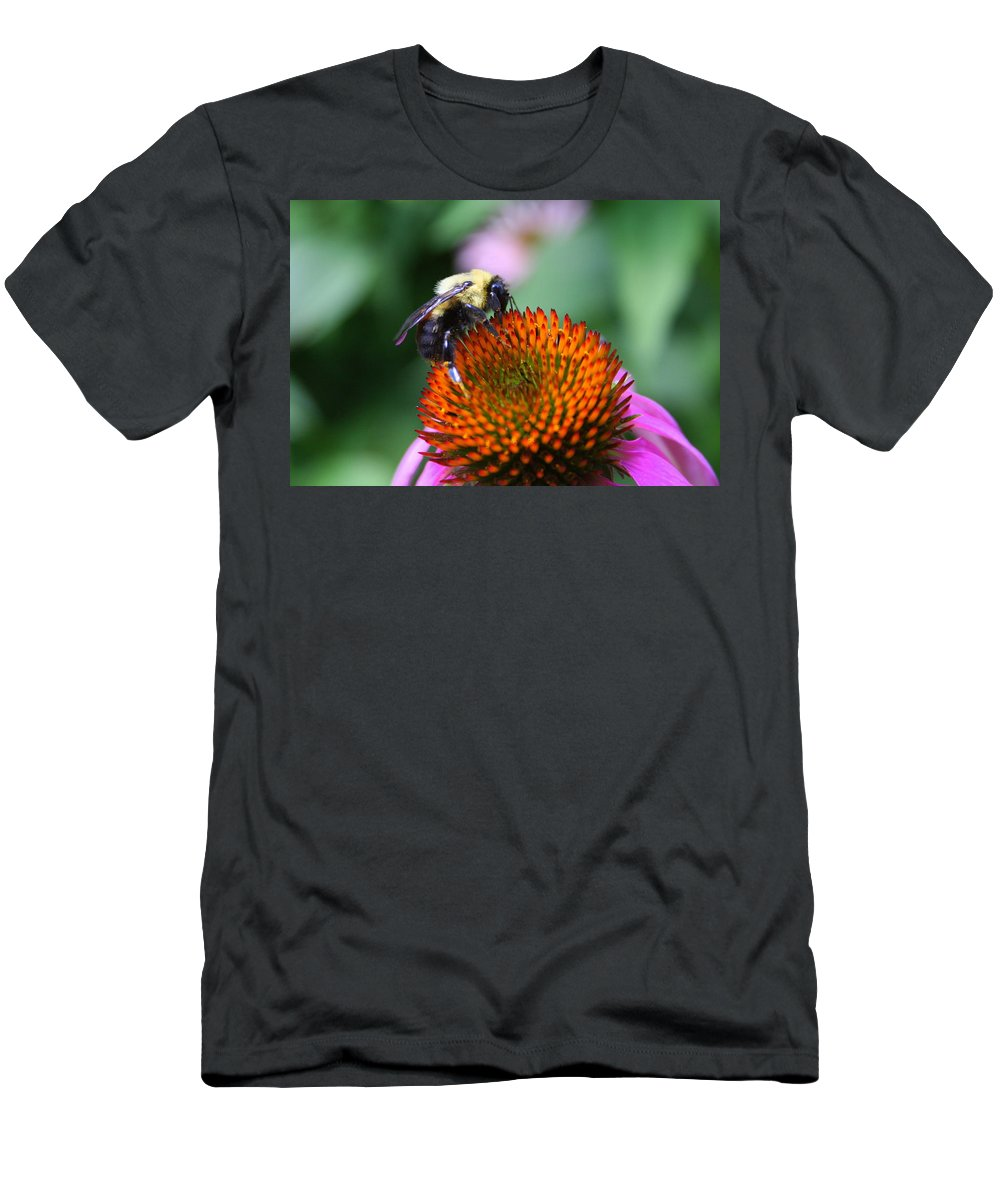 Bumblebee Men's T-Shirt (Athletic Fit) featuring the photograph Bee-ing Happy by Laurel Talabere