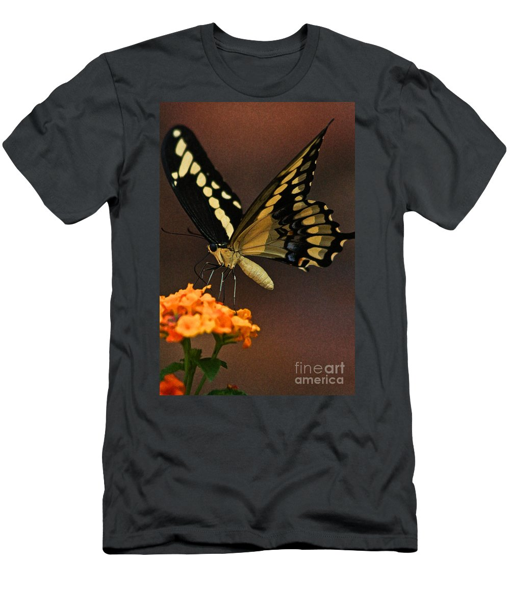 Butterfly Men's T-Shirt (Athletic Fit) featuring the photograph Beneath My Wing by Kim Henderson