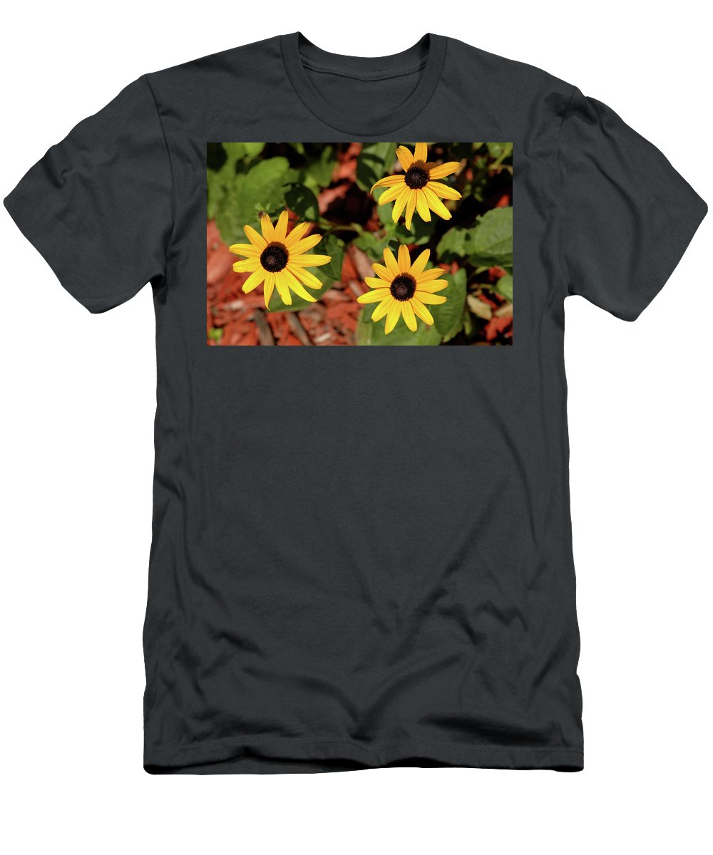 Usa Men's T-Shirt (Athletic Fit) featuring the photograph Black Eyed Susans by LeeAnn McLaneGoetz McLaneGoetzStudioLLCcom