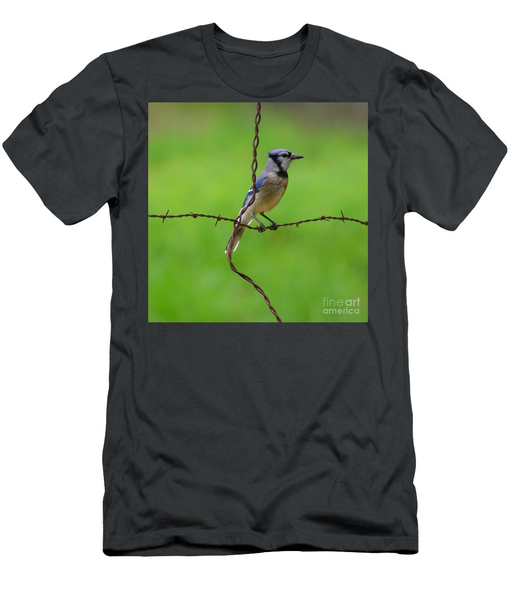 Animal Men's T-Shirt (Athletic Fit) featuring the photograph Blue Jay On Crossed Wire by Robert Frederick