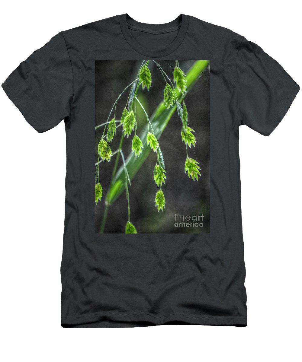 Landscape Men's T-Shirt (Athletic Fit) featuring the photograph Bright Baby Leaves by Peggy Franz